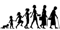 女性の生涯と女性ホルモン 1【女性ホルモン全体の話】