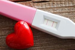 コレステロール値を下げる