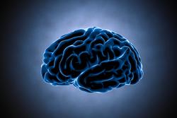 「自律神経失調症かも」と感じたとき、何科を受診すればいいの?